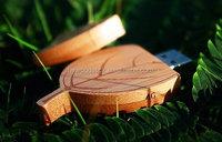 Fashion and Creative Style Bamboo USB Flash Drives 16G Custom