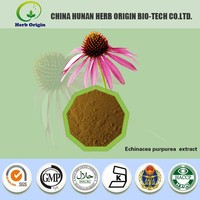 100% plant extract powder echinacea hot sale and top quality echinacea purpurea extract Polyphenole 10%