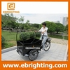 Specialized adult pedal car/ice cream tricycle with CE certificate