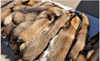Tanned red fox fur skin/Natural /elegant fox fur skin