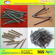 common wire nail /common nail for sale factory