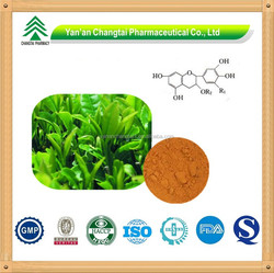 Natural Herbal Extract Gambir Extract Powder
