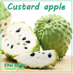 Fresh Custard Apple with sweet taste