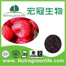 health food plant extract Raspberry extract/Rubus idaeus L/Raspberry Ketone