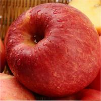 apple fruit brand