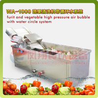 WA-1000 Fruit and Vegetable High Pressure Air Bubble with Water Circle System Washing Machine, Carrot Washing Machine