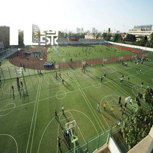 PE & PP As required artificial grass for basketball flooring with natural looking