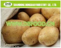 2015 organic fresh potato/potato plant base
