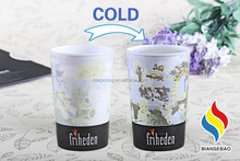 2015 Hot Selling Cool Summer Cold Color Changing Magic World Cup 2014 Promotion Mug