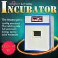 Controlador incubadora y termostato y fertilized huevos de gallina para la incubadora