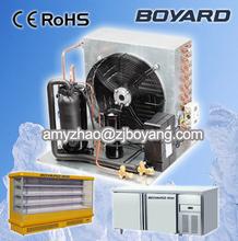 Building Cold Storage Cold Room Freezer Room CE RoHS R22 refrigerant condensing unit