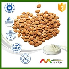 NSF-cGMP maunfacture and 100% natural apricot seeds wholesales