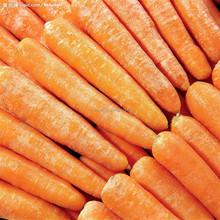On Sale frozen carrot from china