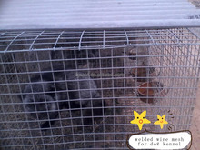 welded wire mesh for house fence ,bird breeding cages,portable dog fence