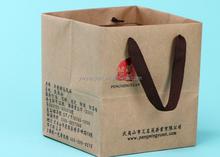 Custom printed grocery / shopping brown kraft paper bag