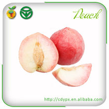 2015 Names All Fruits wholesale fresh peaches nectarine