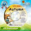 china wholesale products cd printing and replication