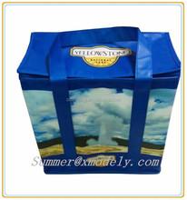 2015 xiamen odely oversized cooler lunch bag,lunch cooler bags for men,non woven cooler bag