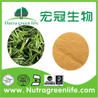 Organic tea extract 90% EGCG white powder with high quality and competitive price