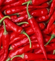 fresh/dry/dried Red Chilli Pepper thailand
