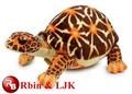 Las tortugas de juguete suave, las tortugas de juguete de felpa, las tortugas de peluche de juguete