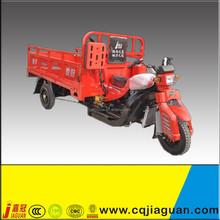 Petro Cargo Tricycle/Three Wheeler With Cargo Box
