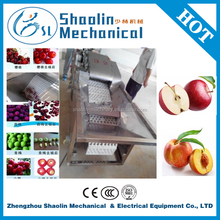 Hot sale olive pit remove machine with fast delivery