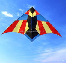 sport delta kite