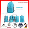 Hot Sale Waterproof Foldable Backpack Travel Bag Foldable Light Weight Bags (ESSFD02)