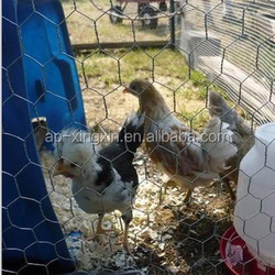 canary bird /cock /dog cage