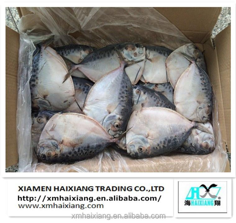 Chinese moonfish seafood buy moonfish seafood moonfish for Opah fish price