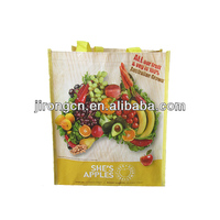 2014 newest design promotion pp non-woven shopping Bag