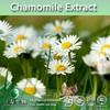 100% Chamomile Extract   Chamomile P.E.   Chamomile flower Extract (1%-98% Apigenin)