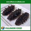 Sea Cucumber Type and Box Packaging frozen sea cucumber prickly