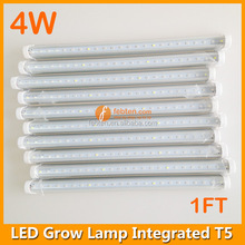 Hydroponic vegetables/fruit/tomato/strawberry/cherry/seed germination/ blossom/ result of 4W led plants growing lamp