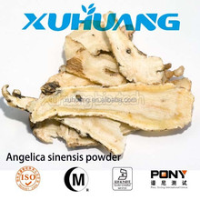plant extract top quality angelica sinensis angelica sinensis powder dong quai extract