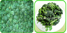 IQF, FROZEN SPINACH