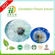 Hot Sale GMP Certificate 100% Pure Natural Dandelion Leaf Extract