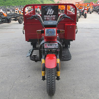 adult big wheel tricycle/chongqing cargo tricycle/triciclo electric