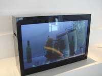 Vewell 46inch Transparent LCD Display Box