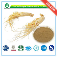 Hot Sale GMP Certificate 100% Pure Natural ginseng root extract
