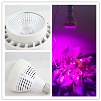 China supplier energy reduction cob 60w led grow light for hydroponic system