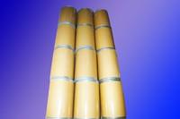 Citicoline sodium/noopept/oxiracetam/Sulbutiamine/aniracetam/piracetam//pramiraceram/alpha GPC