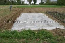 [FACTORY]BSCI PP Nonwoven garden fleece/green garden fleece roll/PP fabric plant pot cover