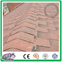 Fiberglass asphalt roofing Shingles coloured glaze cheap roofing tiles china with low price