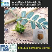 90% Saponins 100% Natural Pure Tribulus Terrestris Extract Powder