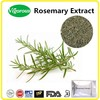 free sample Rosemary Powder, GMP Carnosic acid rosemary extract,ISO Rosmarinic acid Rosmarinus officinalis extract