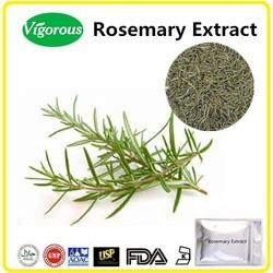 free sample Rosemary Powder, GMP Carnosic acid rosemary extract,ISO Rosmarinic acid Rosmarinus officinalis extract