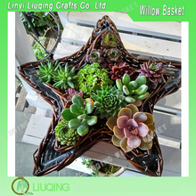 Cute Design Wicker Willow Star-Shaped Flower Basket With Plastic Linner Garden Basket