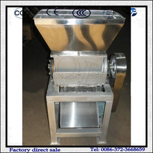 Stainless Steel 304 Fruit and Vegetable Grinder Machine Price